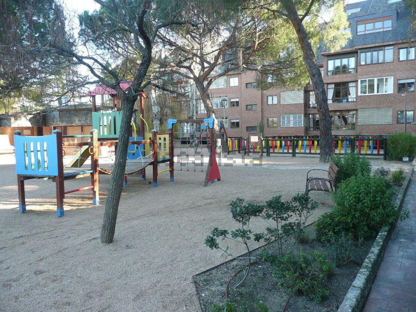ホームステイ 公園